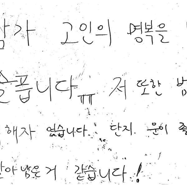 강남역 추모메세지 서울시민청 #433
