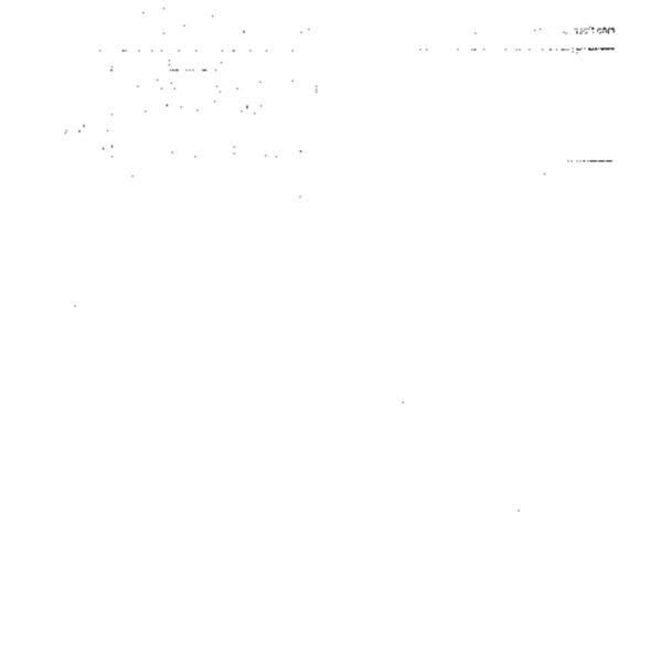 2000년법정 국제공청회건